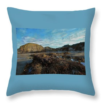 Throw Pillow featuring the photograph Barnacles On The Beach by Thom Zehrfeld