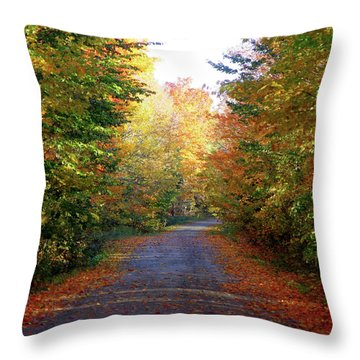 Barnes Road - Cropped Throw Pillow