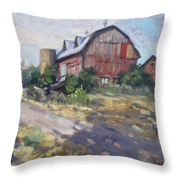 Barns In Georgetown Throw Pillow