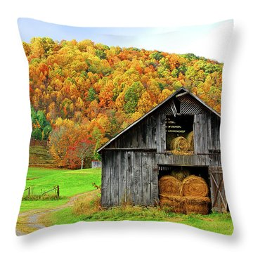 Barntifull Throw Pillow by Dale R Carlson