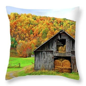 Barntifull Throw Pillow