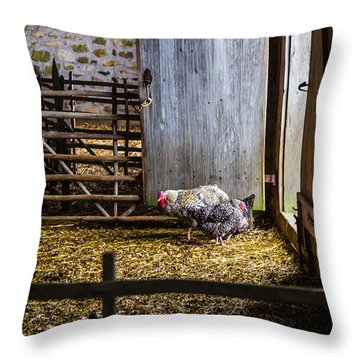 Barnyard Friends Throw Pillow