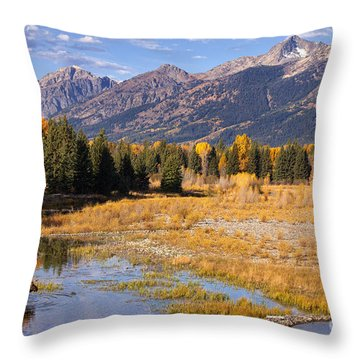 Bull In The Beaver Ponds Throw Pillow by Aaron Whittemore