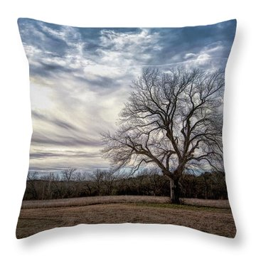 Baron Tree Of Winter Throw Pillow