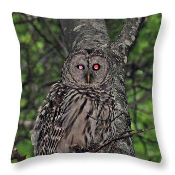 Throw Pillow featuring the photograph Barred Owl 3 by Glenn Gordon