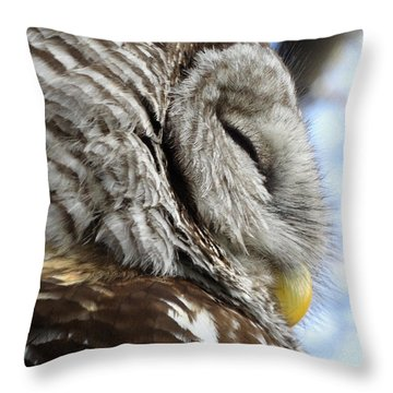 Barred Owl Beauty Throw Pillow