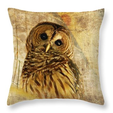 Throw Pillow featuring the photograph Barred Owl by Lois Bryan
