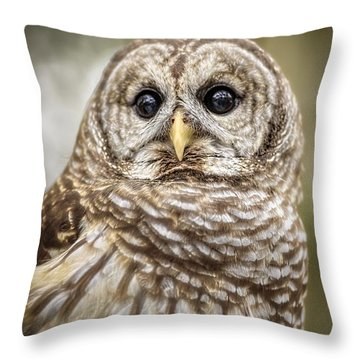 Throw Pillow featuring the photograph Hoot by Steven Sparks