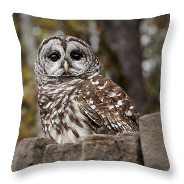 Throw Pillow featuring the photograph Barred Owl by Tyson and Kathy Smith