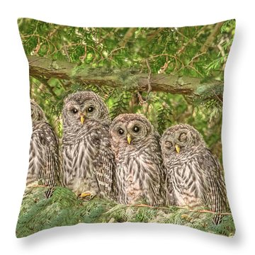Barred Owlets Nursery Throw Pillow
