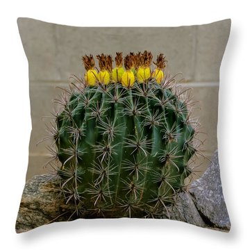 Barrel Against Wall No50 Throw Pillow