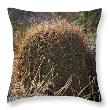 Barrel Cactus Throw Pillow by Kelley King
