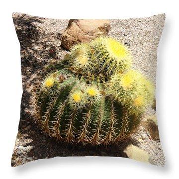 Barrel Of Cactus Needles Throw Pillow