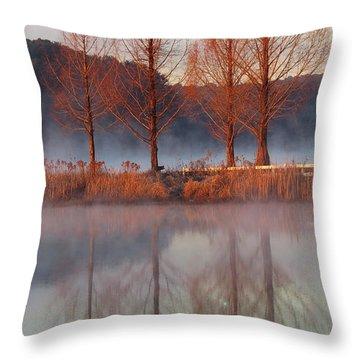 Barren, Beautiful Trees Throw Pillow