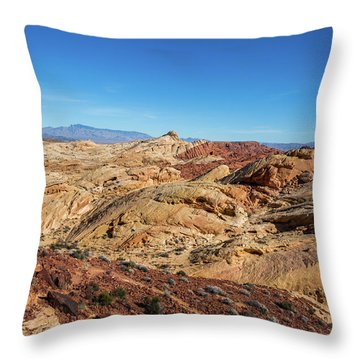 Barren Desert Throw Pillow
