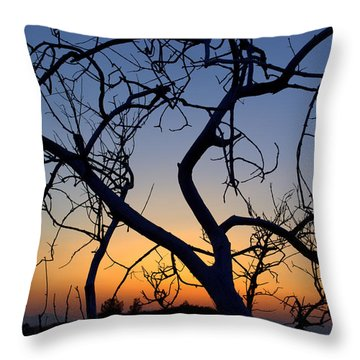 Throw Pillow featuring the photograph Barren Tree At Sunset by Lori Seaman