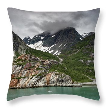 Barren Wilderness Throw Pillow