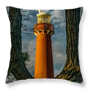 Throw Pillow featuring the photograph Barrny Thru The Trees by Nick Zelinsky
