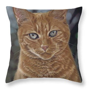 Barry The Cat Throw Pillow