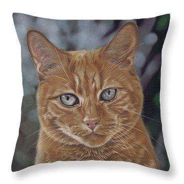 Barry The Cat Throw Pillow