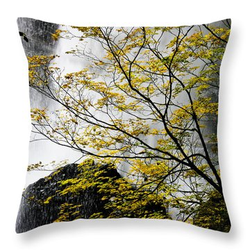 Base Of The Falls. Throw Pillow