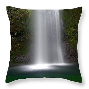 Base Of The Falls Throw Pillow by Marty Koch