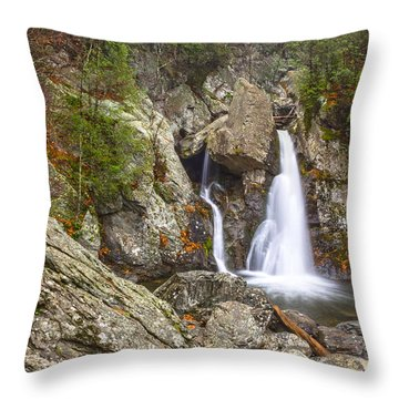 Bash Bish Falls In November 2 Throw Pillow by Angelo Marcialis