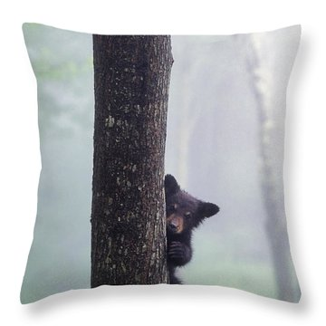 Bashful Bear Cub - Fs000230 Throw Pillow