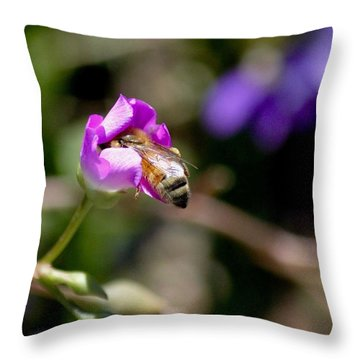 Bashful Bee  Throw Pillow