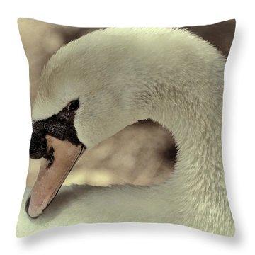 Bashful Swan Throw Pillow