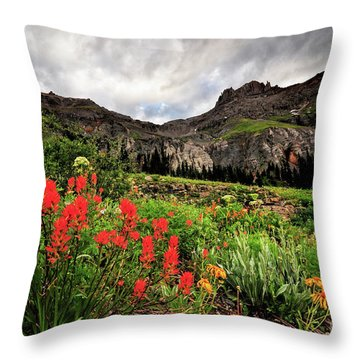 Basin Brushes Throw Pillow
