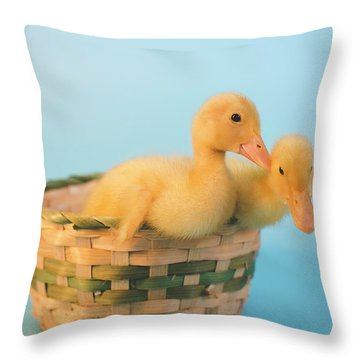 Basket Of Fun Throw Pillow