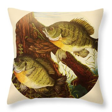 Basking Bluegills Throw Pillow