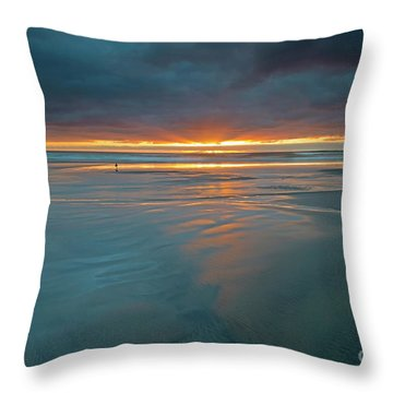 Basking In The Light Throw Pillow