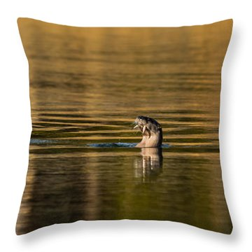 Basking In The Sunset Light Throw Pillow by Yeates Photography