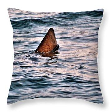 Basking Shark In July Throw Pillow