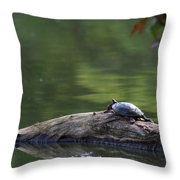 Throw Pillow featuring the photograph Basking Turtle by Lyle Hatch