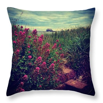 Bass Rock Flower Shot - North Berwick Throw Pillow
