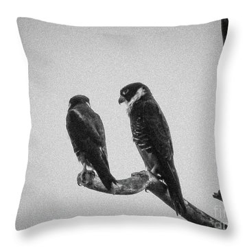 Bat Falcon In Black And White Throw Pillow