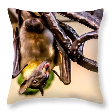 Bat Gobbling Apple Throw Pillow