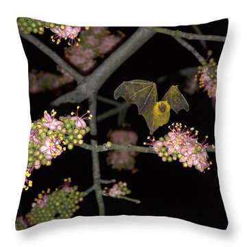 Throw Pillow featuring the photograph Bat by Jim Walls PhotoArtist