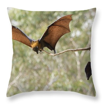 Bat Landing Throw Pillow