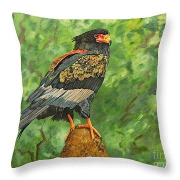 Bataleur Eagle Throw Pillow by Caroline Street
