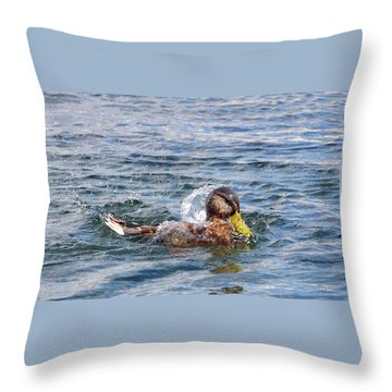 Throw Pillow featuring the photograph Bath Time by Glenn Gordon