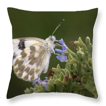 Bath White Throw Pillow