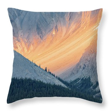 Bathed In Light Throw Pillow by Carl Amoth