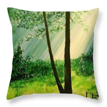 Bathed In Light Throw Pillow by Lizzy Forrester