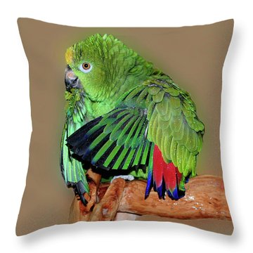 Bathing Beauty Amazon Throw Pillow