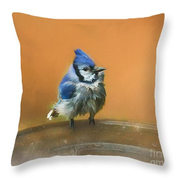 Bathing Blue Jay Throw Pillow