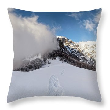 Battle Of Earth And Sky Throw Pillow by Evgeni Dinev